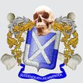 Logo Sudden Death de Kilmarnock